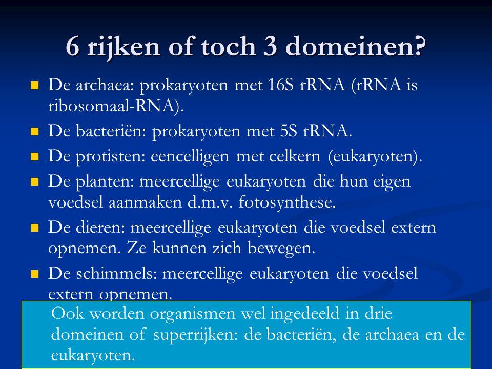 6 rijken of toch 3 domeinen? De archaea: prokaryoten met 16S rRNA (rRNA is ribosomaal-RNA). De bacteriën: prokaryoten met 5S rRNA. De protisten: eence