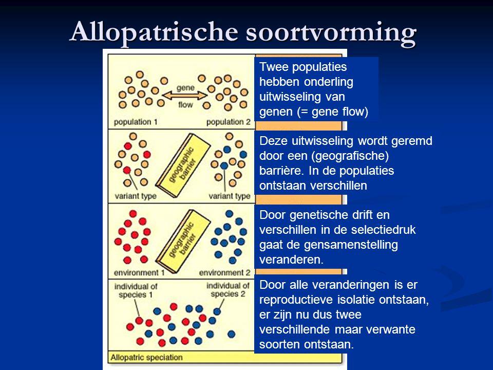 Allopatrische soortvorming Twee populaties hebben onderling uitwisseling van genen (= gene flow) Deze uitwisseling wordt geremd door een (geografische