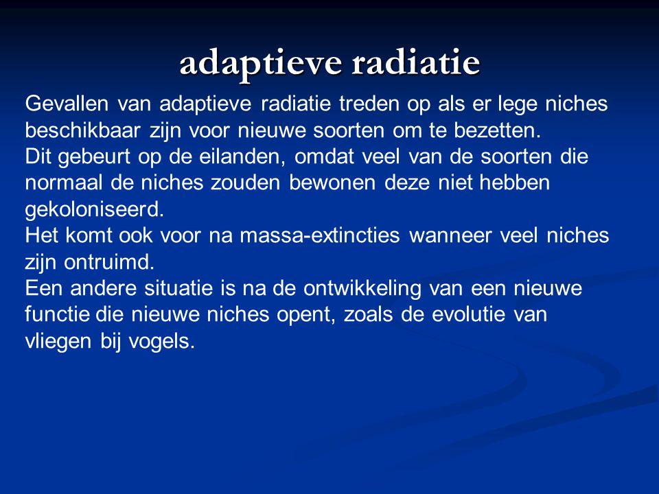 adaptieve radiatie Gevallen van adaptieve radiatie treden op als er lege niches beschikbaar zijn voor nieuwe soorten om te bezetten. Dit gebeurt op de