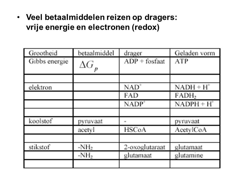 Veel betaalmiddelen reizen op dragers: vrije energie en electronen (redox)