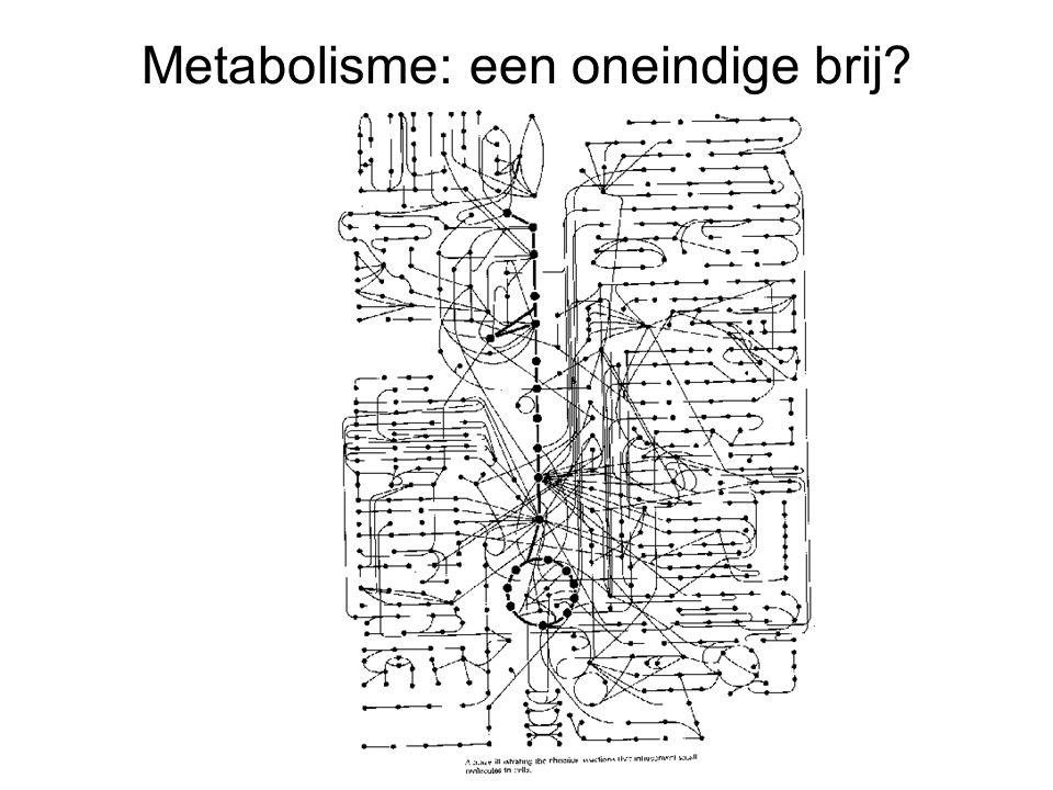 Metabolisme: een oneindige brij?