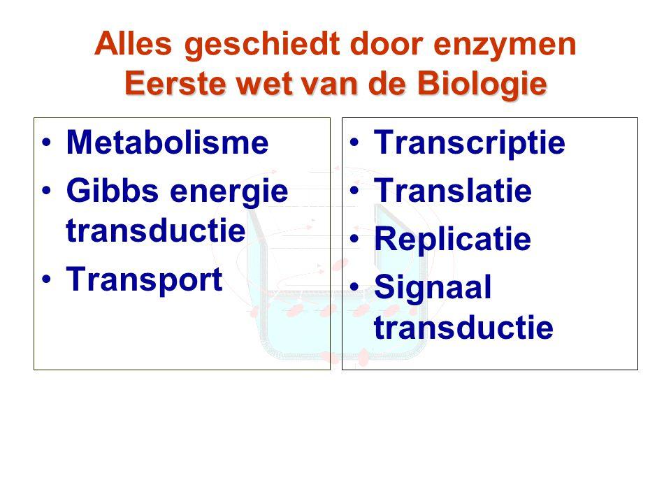 Eerste wet van de Biologie Alles geschiedt door enzymen Eerste wet van de Biologie Metabolisme Gibbs energie transductie Transport Transcriptie Translatie Replicatie Signaal transductie