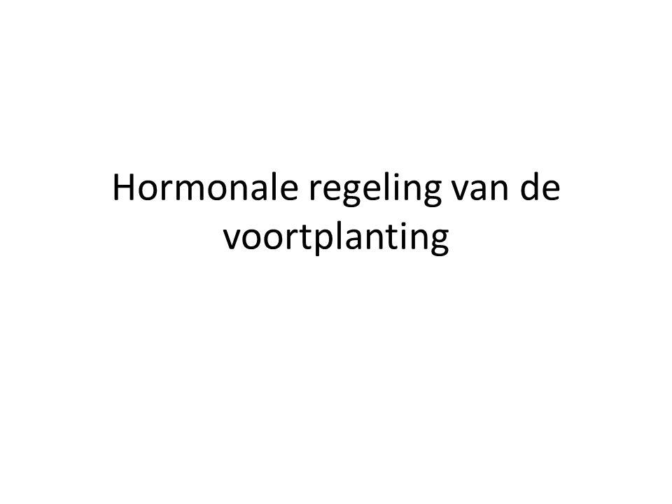 Hormonale regeling van de voortplanting