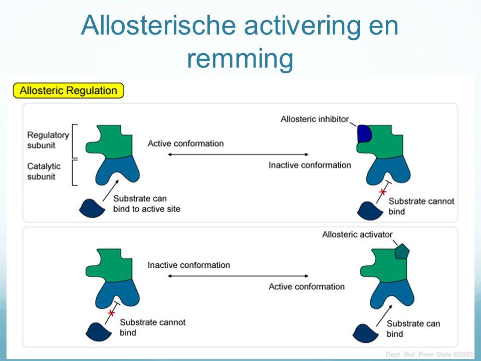Allosterische activering en remming