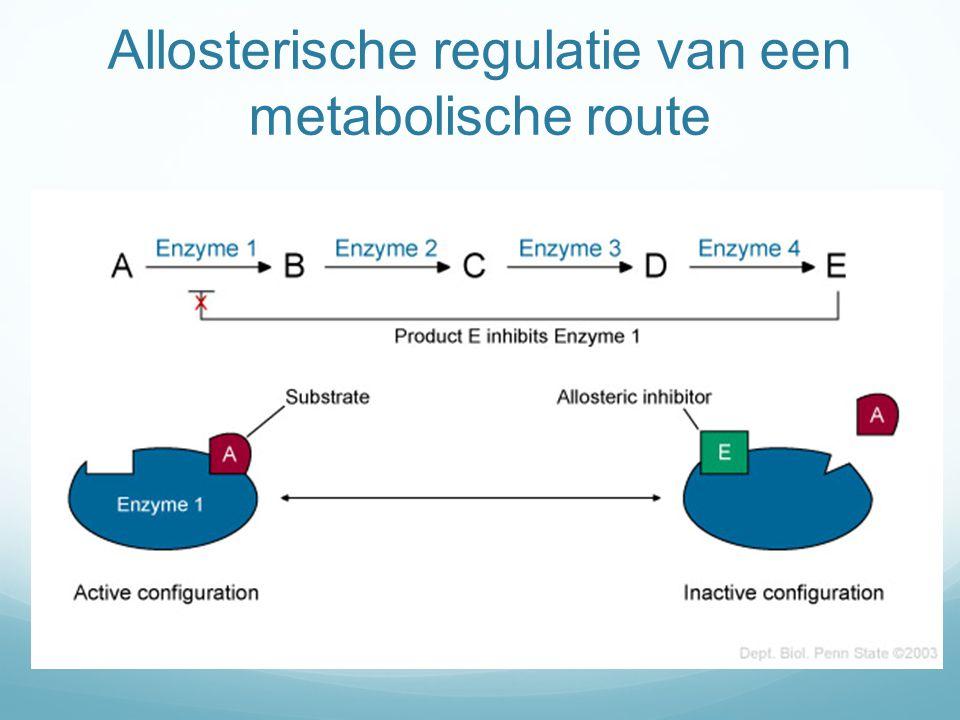 Allosterische regulatie van een metabolische route