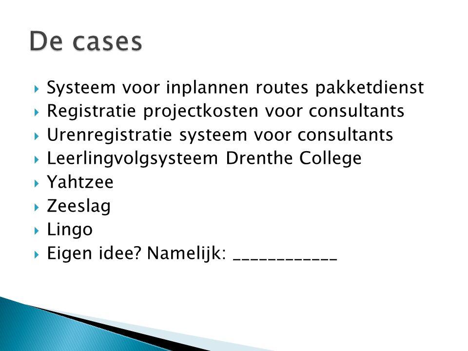  Systeem voor inplannen routes pakketdienst  Registratie projectkosten voor consultants  Urenregistratie systeem voor consultants  Leerlingvolgsys