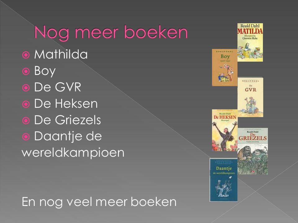  Mathilda  Boy  De GVR  De Heksen  De Griezels  Daantje de wereldkampioen En nog veel meer boeken