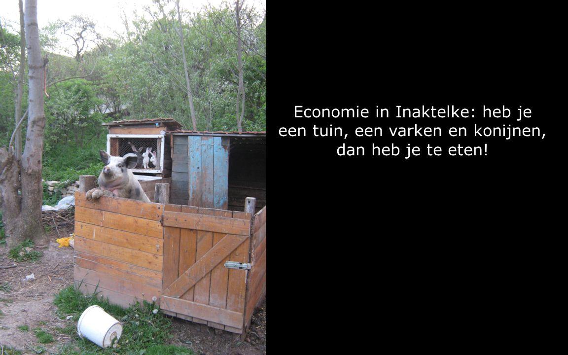 Economie in Inaktelke: heb je een tuin, een varken en konijnen, dan heb je te eten!