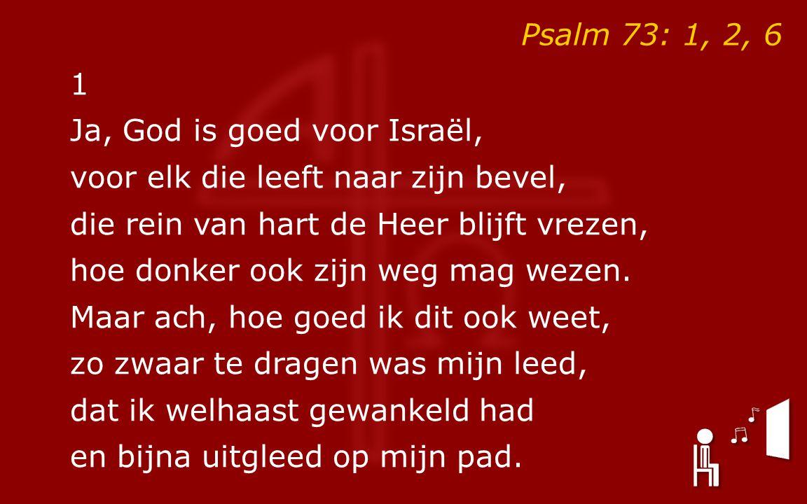 1 Ja, God is goed voor Israël, voor elk die leeft naar zijn bevel, die rein van hart de Heer blijft vrezen, hoe donker ook zijn weg mag wezen.