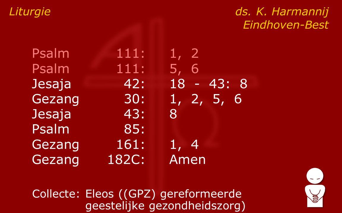 Psalm111:1, 2 Psalm111:5, 6 Jesaja42:18 - 43: 8 Gezang30:1, 2, 5, 6 Jesaja43:8 Psalm85: Gezang161:1, 4 Gezang182C:Amen Liturgie ds.