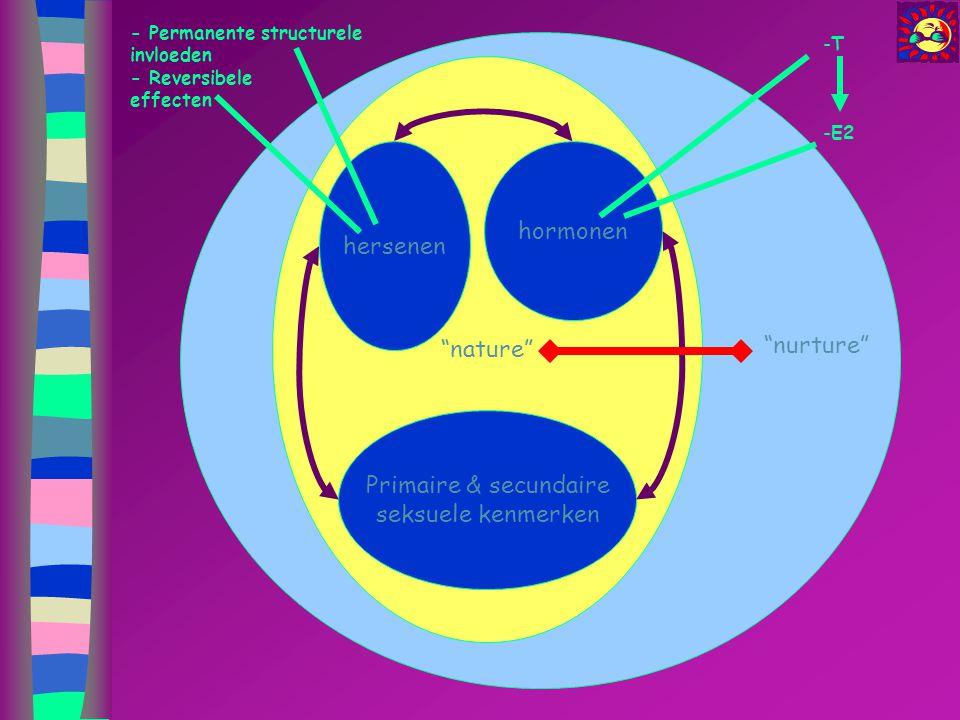 """""""nature"""" hersenen Primaire & secundaire seksuele kenmerken hormonen """"nurture"""" - Permanente structurele invloeden - Reversibele effecten -T -E2"""