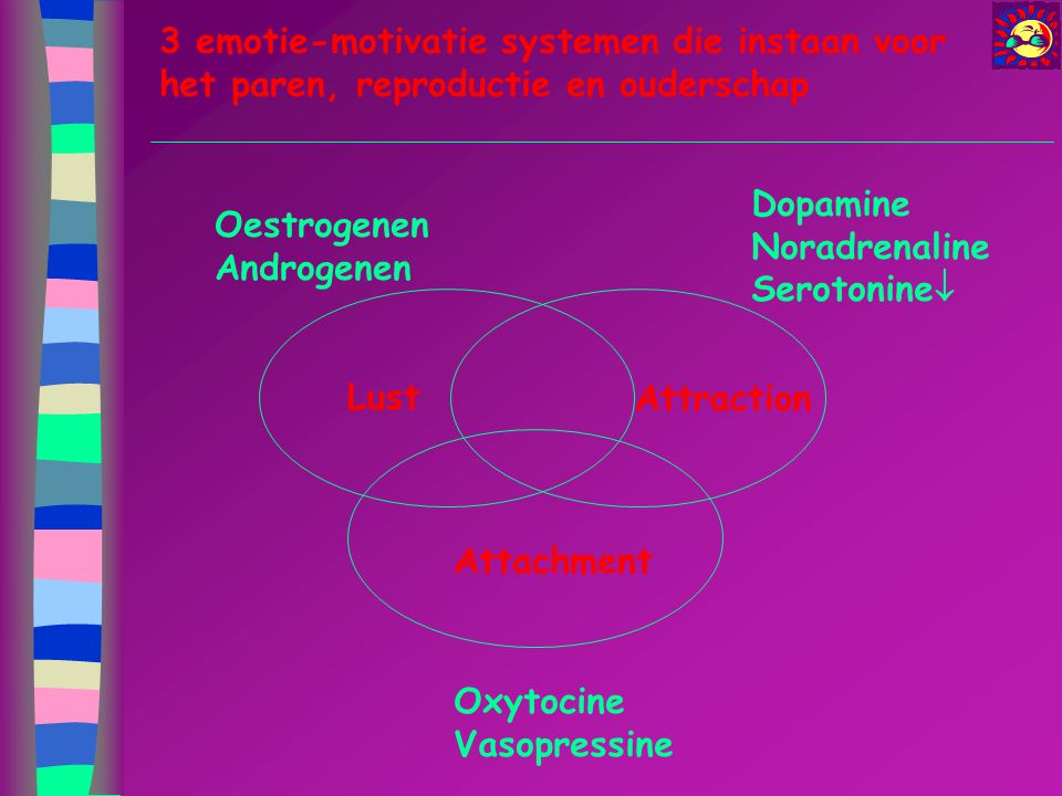 Lust Attraction Attachment Oestrogenen Androgenen Dopamine Noradrenaline Serotonine  Oxytocine Vasopressine 3 emotie-motivatie systemen die instaan v