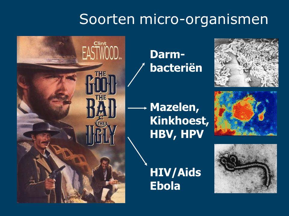 Darm- bacteriën Mazelen, Kinkhoest, HBV, HPV HIV/Aids Ebola Soorten micro-organismen