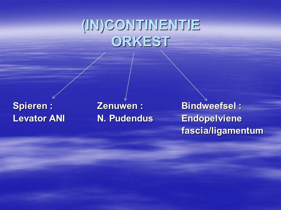 (IN)CONTINENTIE ORKEST Spieren : Zenuwen : Bindweefsel : Levator ANIN. PudendusEndopelviene fascia/ligamentum