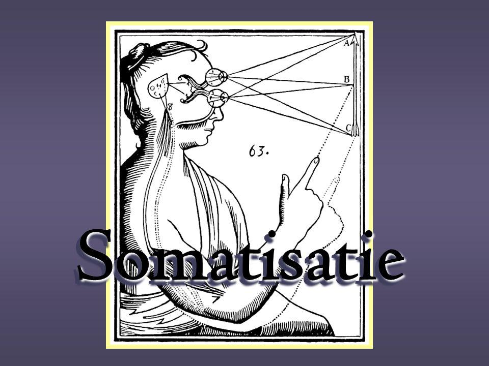 SomatisatieSomatisatie