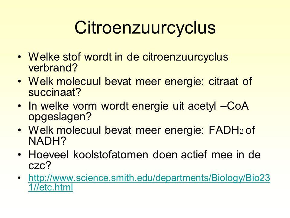 Citroenzuurcyclus Welke stof wordt in de citroenzuurcyclus verbrand? Welk molecuul bevat meer energie: citraat of succinaat? In welke vorm wordt energ