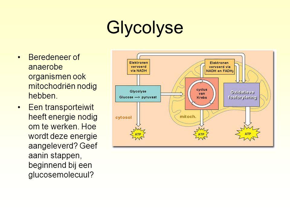 Glycolyse Beredeneer of anaerobe organismen ook mitochodriën nodig hebben. Een transporteiwit heeft energie nodig om te werken. Hoe wordt deze energie