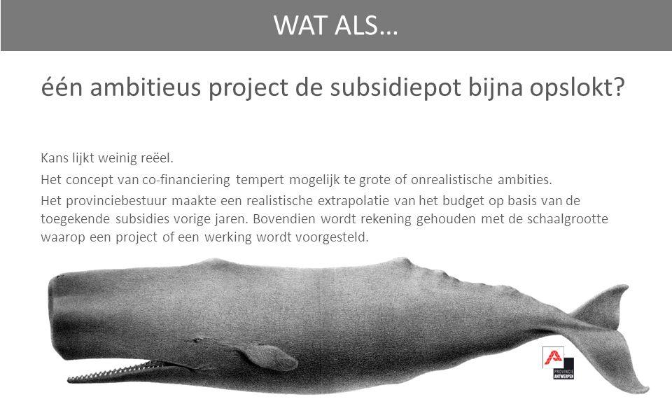 één ambitieus project de subsidiepot bijna opslokt.
