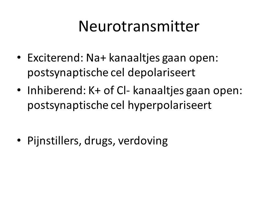 Neurotransmitter Exciterend: Na+ kanaaltjes gaan open: postsynaptische cel depolariseert Inhiberend: K+ of Cl- kanaaltjes gaan open: postsynaptische cel hyperpolariseert Pijnstillers, drugs, verdoving