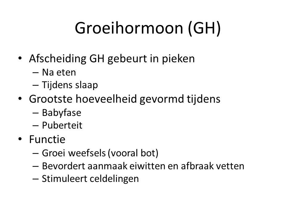Groeihormoon (GH) Afscheiding GH gebeurt in pieken – Na eten – Tijdens slaap Grootste hoeveelheid gevormd tijdens – Babyfase – Puberteit Functie – Gro