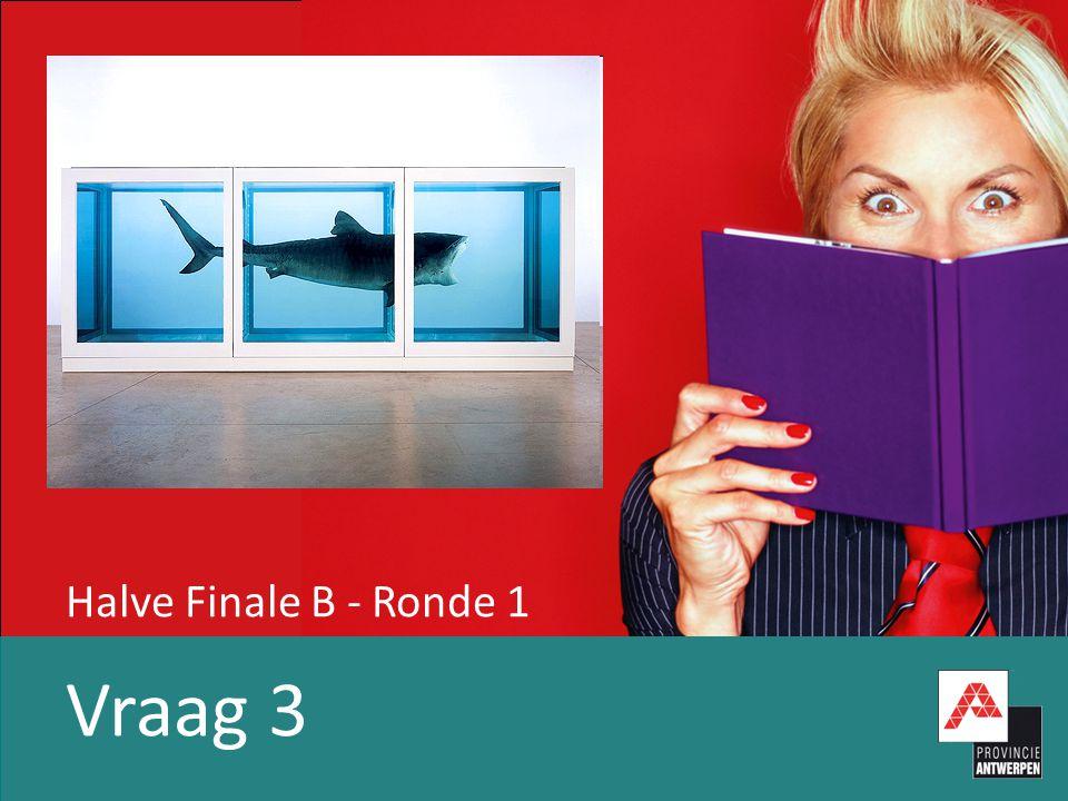 Halve Finale B - Ronde 1 Vraag 3