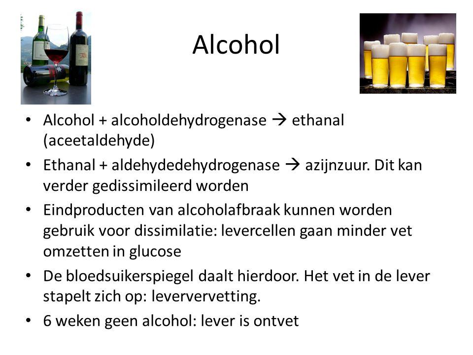 Alcohol Alcohol + alcoholdehydrogenase  ethanal (aceetaldehyde) Ethanal + aldehydedehydrogenase  azijnzuur. Dit kan verder gedissimileerd worden Ein