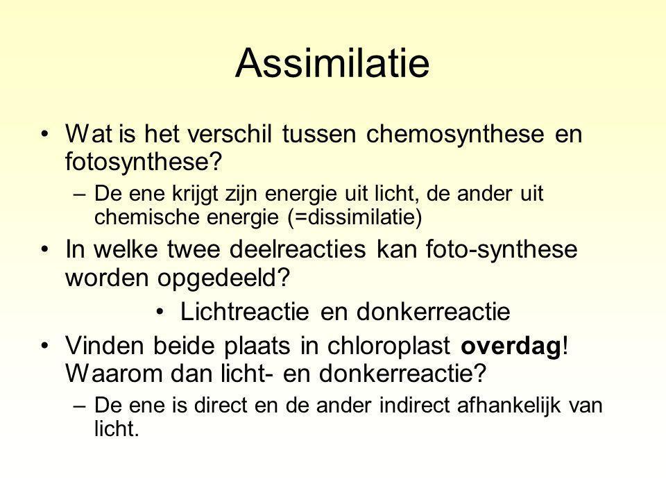 Assimilatie Wat is het verschil tussen chemosynthese en fotosynthese.
