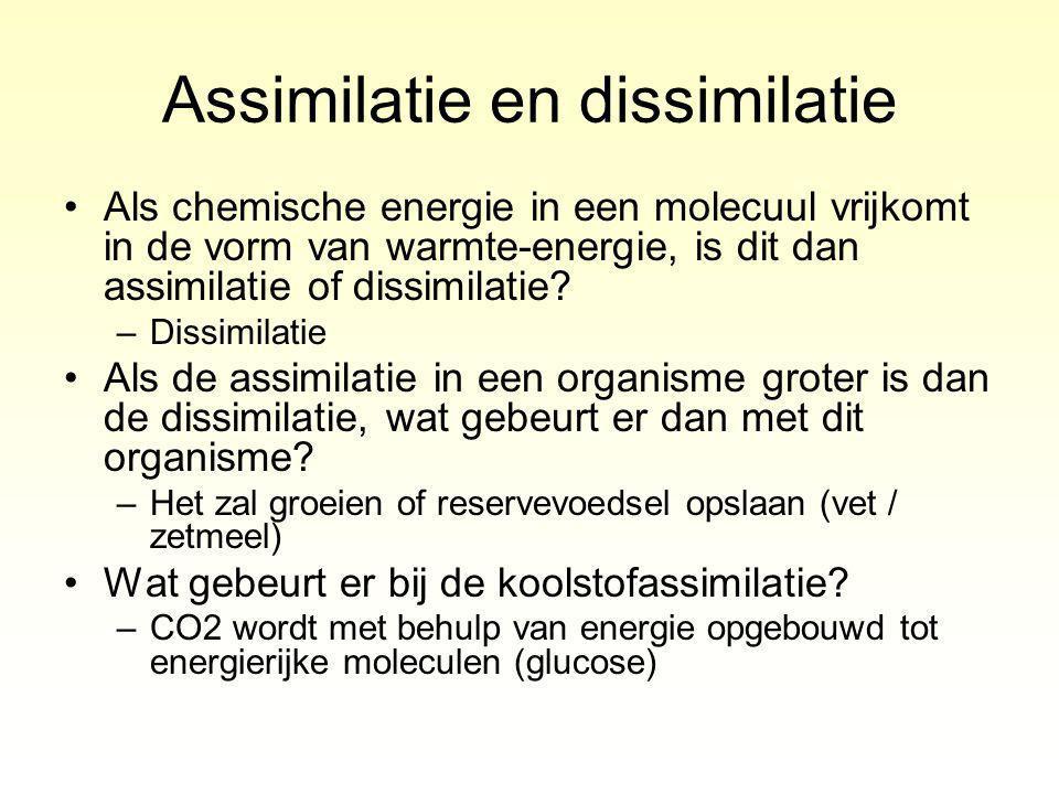 Als chemische energie in een molecuul vrijkomt in de vorm van warmte-energie, is dit dan assimilatie of dissimilatie.
