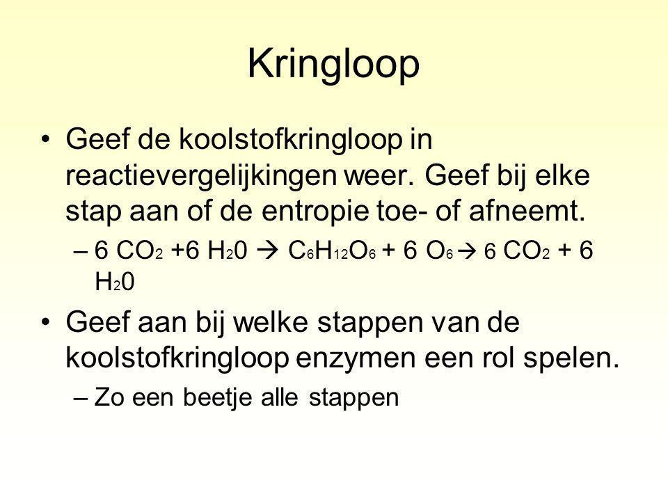 Kringloop Geef de koolstofkringloop in reactievergelijkingen weer.