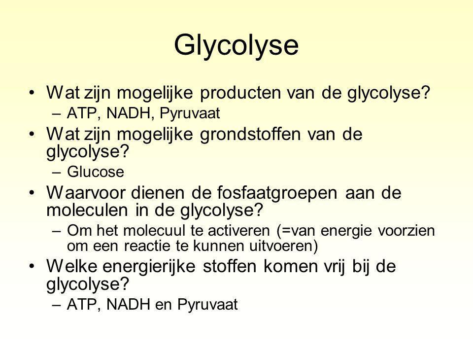Glycolyse Wat zijn mogelijke producten van de glycolyse.
