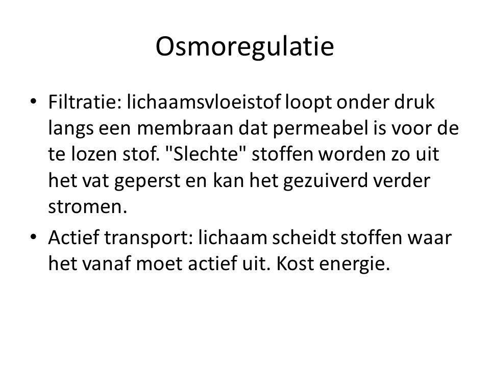 Osmoregulatie Filtratie: lichaamsvloeistof loopt onder druk langs een membraan dat permeabel is voor de te lozen stof.