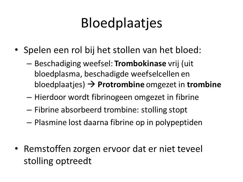 Bloedplaatjes Spelen een rol bij het stollen van het bloed: – Beschadiging weefsel: Trombokinase vrij (uit bloedplasma, beschadigde weefselcellen en bloedplaatjes)  Protrombine omgezet in trombine – Hierdoor wordt fibrinogeen omgezet in fibrine – Fibrine absorbeerd trombine: stolling stopt – Plasmine lost daarna fibrine op in polypeptiden Remstoffen zorgen ervoor dat er niet teveel stolling optreedt