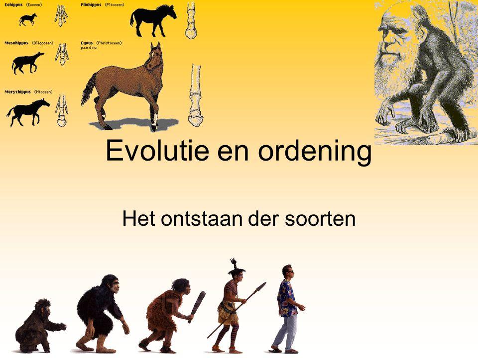 Evolutie is… Bedacht door Charles Darwin en in de 20 ste eeuw verder uitgewerkt tot de moderne synthese door o.a.