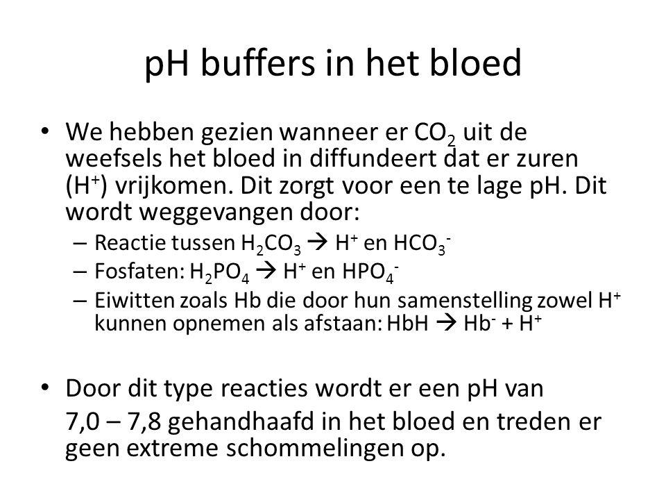 pH buffers in het bloed We hebben gezien wanneer er CO 2 uit de weefsels het bloed in diffundeert dat er zuren (H + ) vrijkomen. Dit zorgt voor een te