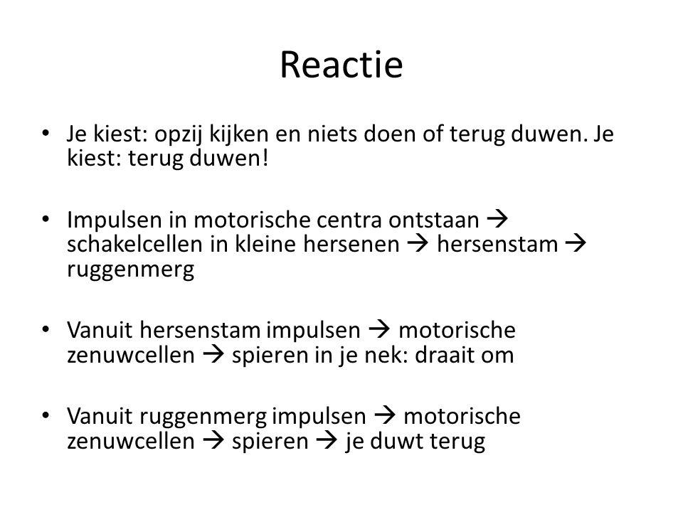 Reflex Reflex is dus een onwillekeurige en zeer snelle reactie op een prikkel.