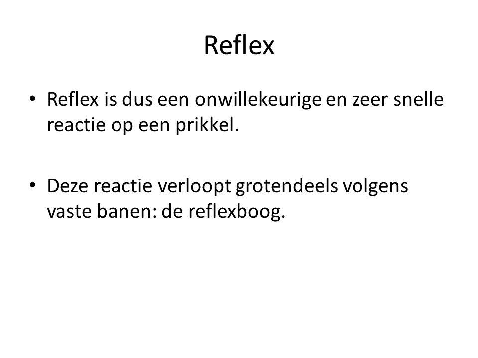 Reflex Reflex is dus een onwillekeurige en zeer snelle reactie op een prikkel. Deze reactie verloopt grotendeels volgens vaste banen: de reflexboog.