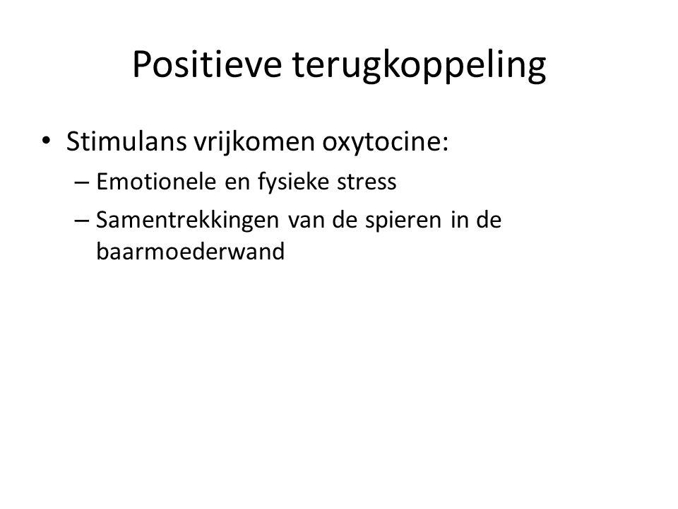 Positieve terugkoppeling Stimulans vrijkomen oxytocine: – Emotionele en fysieke stress – Samentrekkingen van de spieren in de baarmoederwand