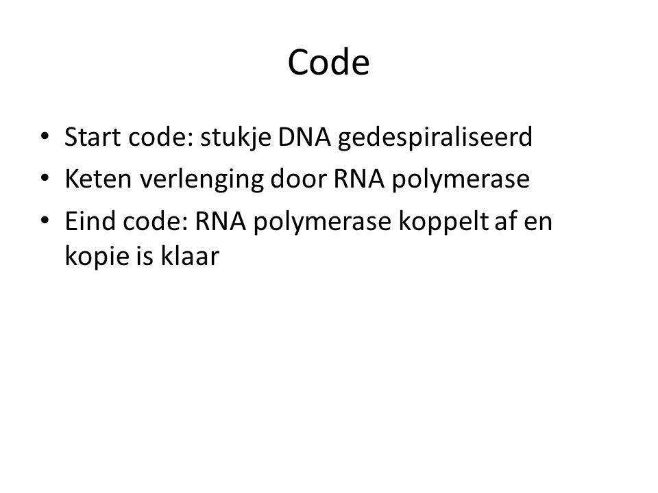 Code Start code: stukje DNA gedespiraliseerd Keten verlenging door RNA polymerase Eind code: RNA polymerase koppelt af en kopie is klaar