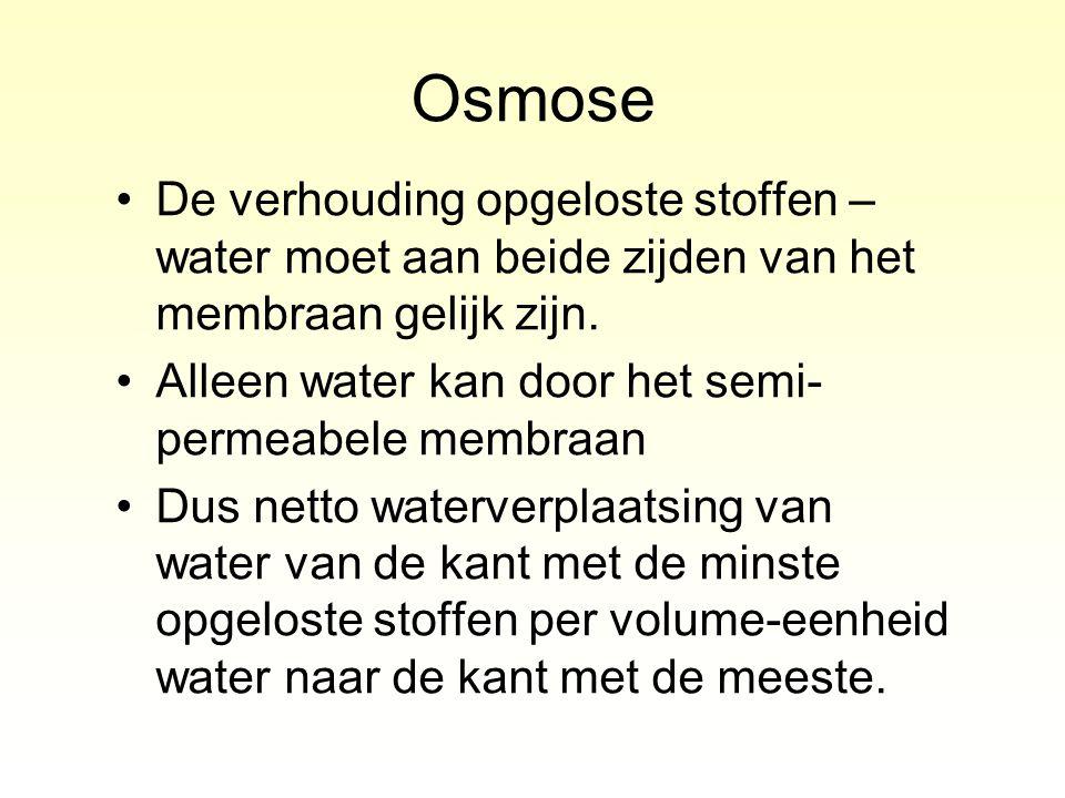 De verhouding opgeloste stoffen – water moet aan beide zijden van het membraan gelijk zijn. Alleen water kan door het semi- permeabele membraan Dus ne