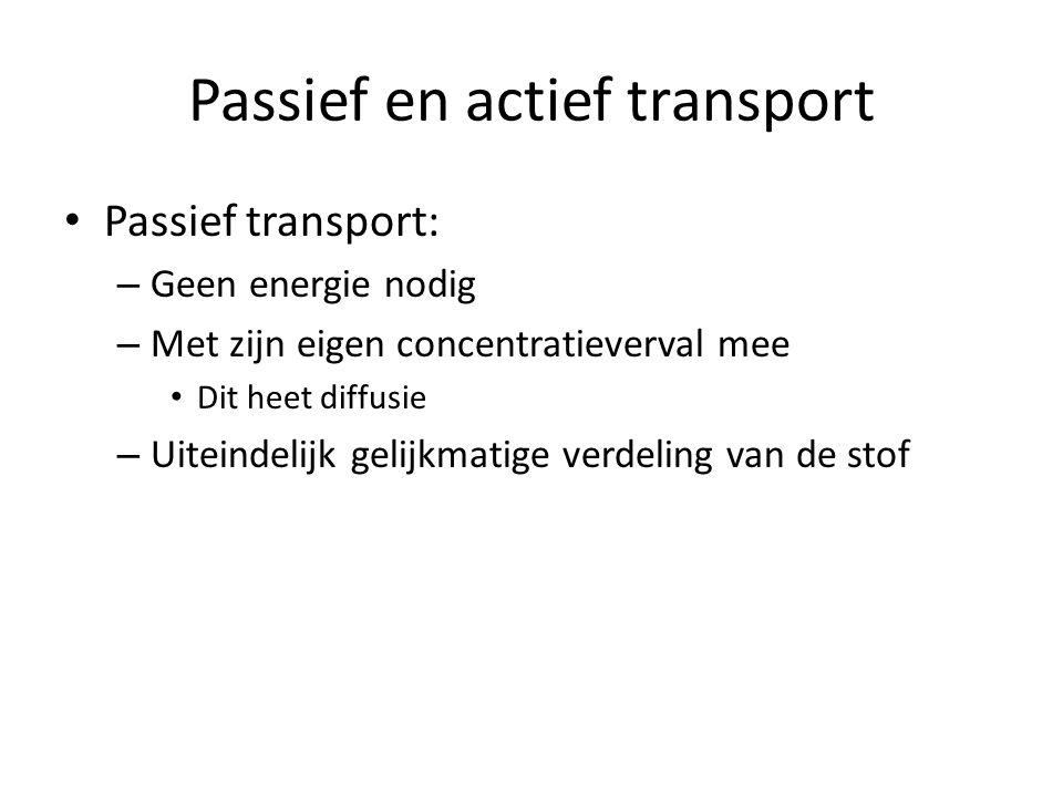 Passief en actief transport Passief transport: – Geen energie nodig – Met zijn eigen concentratieverval mee Dit heet diffusie – Uiteindelijk gelijkmat