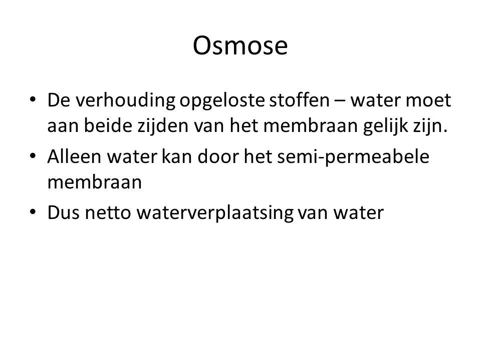 De verhouding opgeloste stoffen – water moet aan beide zijden van het membraan gelijk zijn. Alleen water kan door het semi-permeabele membraan Dus net
