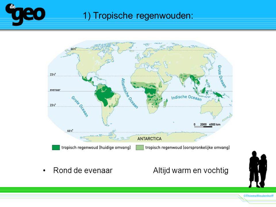 1) Tropische regenwouden: Rond de evenaarAltijd warm en vochtig