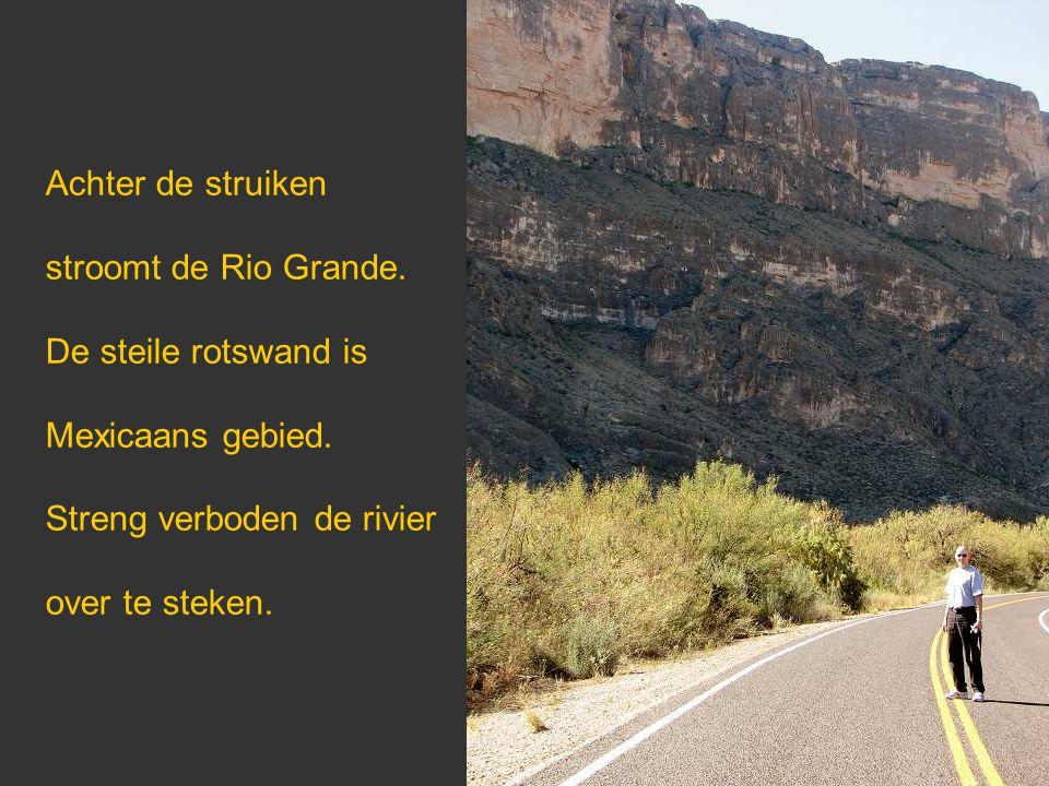 Achter de struiken stroomt de Rio Grande. De steile rotswand is Mexicaans gebied. Streng verboden de rivier over te steken.