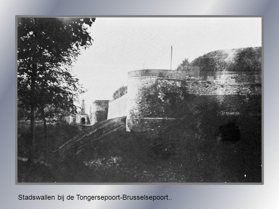 Stadswallen bij de Tongersepoort-Brusselsepoort..