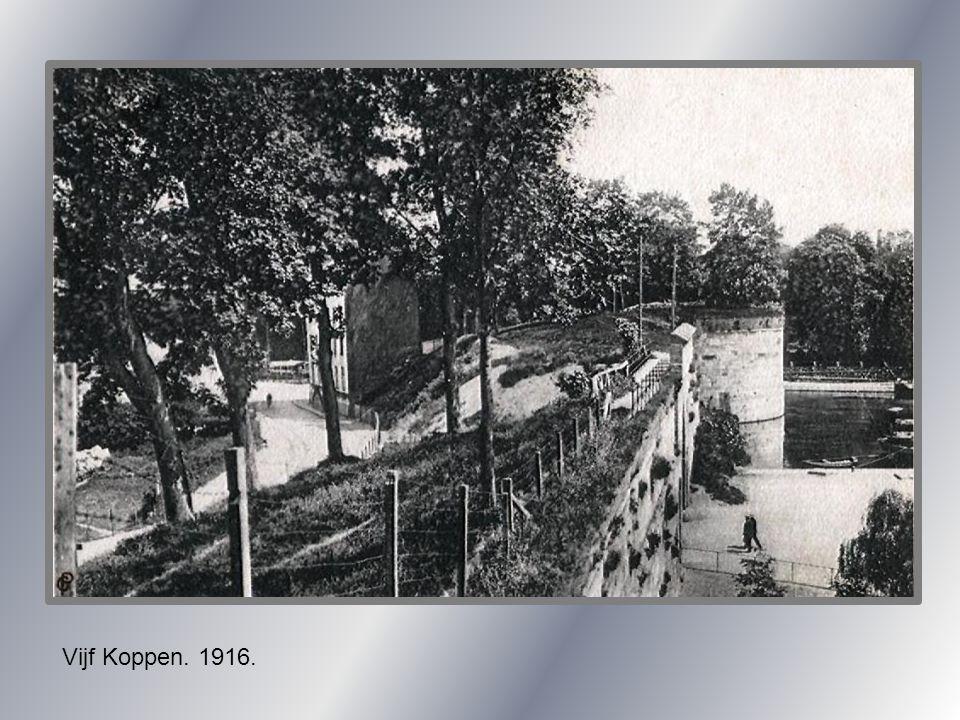 Watersnood. Grote Looierstraat-Zwingelput. 1895.