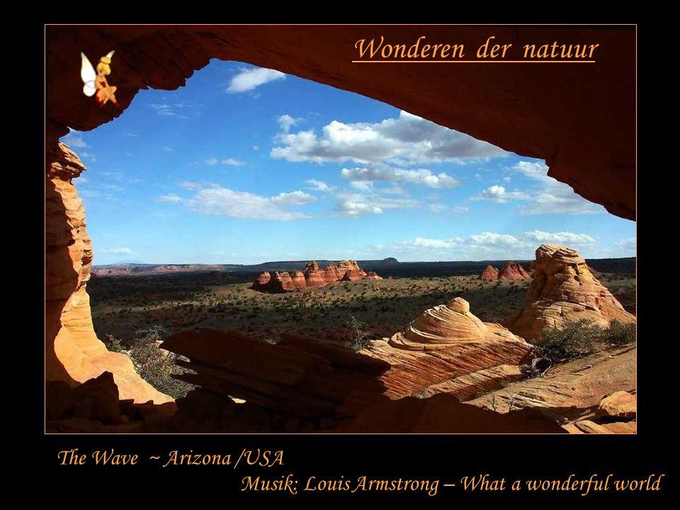 Wonderen der natuur The Wave ~ Arizona /USA Musik: Louis Armstrong – What a wonderful world