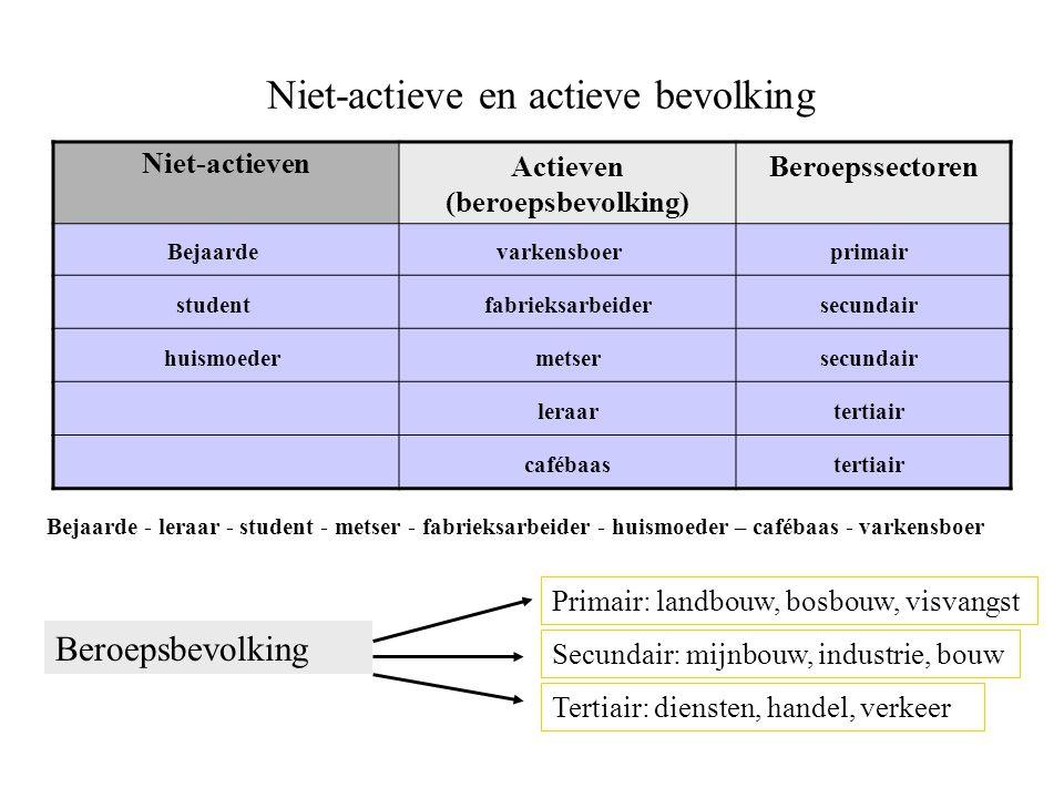 Niet-actieve en actieve bevolking Niet-actieven Actieven (beroepsbevolking) Beroepssectoren Bejaarde - leraar - student - metser - fabrieksarbeider -