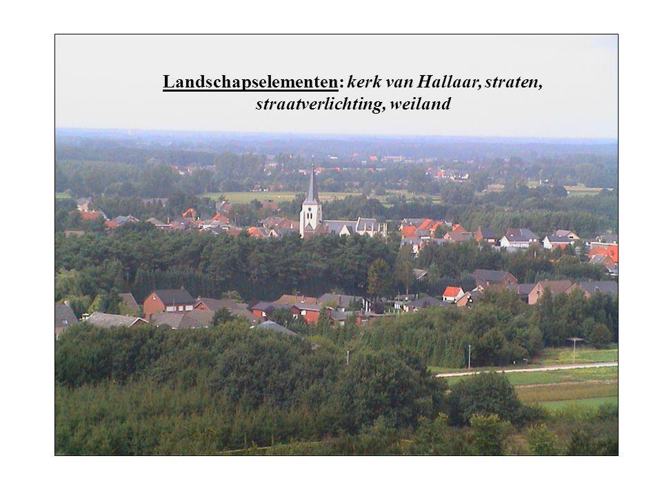Landschapselementen: kerk van Hallaar, straten, straatverlichting, weiland