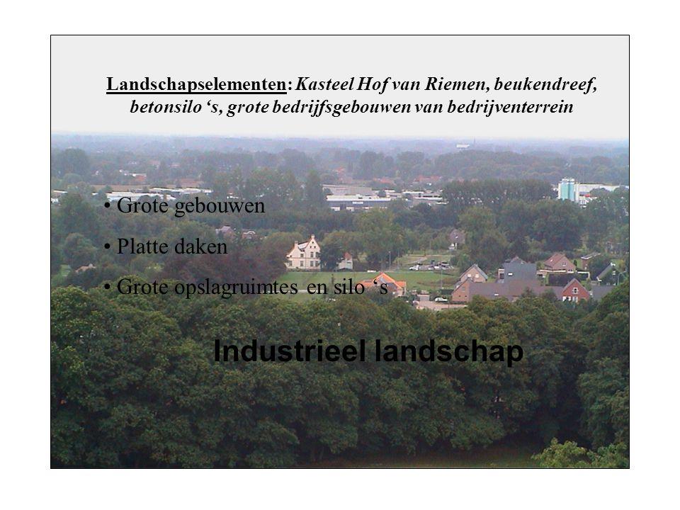 Landschapselementen: Kasteel Hof van Riemen, beukendreef, betonsilo 's, grote bedrijfsgebouwen van bedrijventerrein Grote gebouwen Platte daken Grote opslagruimtes en silo 's Industrieel landschap
