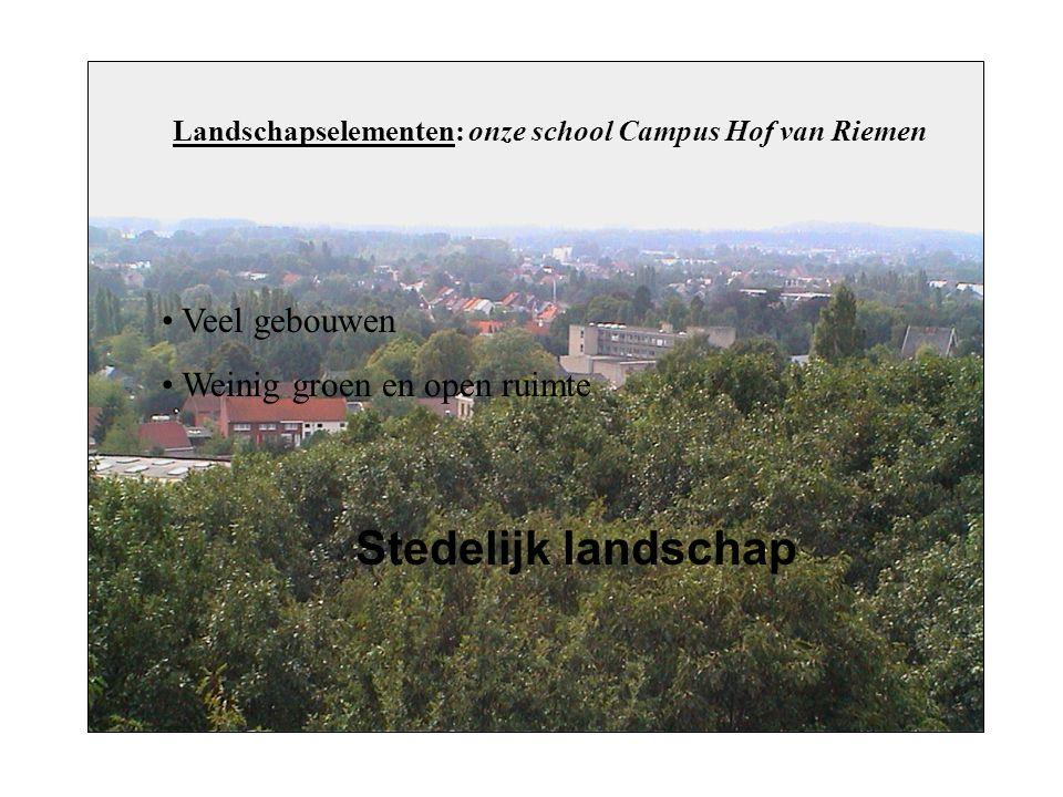 Landschapselementen: onze school Campus Hof van Riemen Veel gebouwen Weinig groen en open ruimte Stedelijk landschap